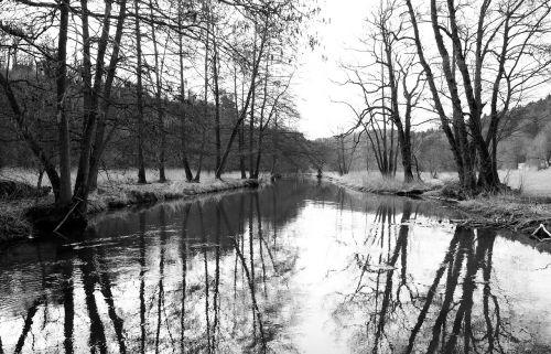 atspindys, vandenys, medis, upė, gamta, juoda ir balta fotografija, panorama, kraštovaizdis, mediena, be honoraro mokesčio