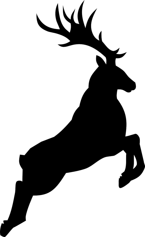 šiaurės elniai,gyvūnas,laukinė gamta,nemokama vektorinė grafika