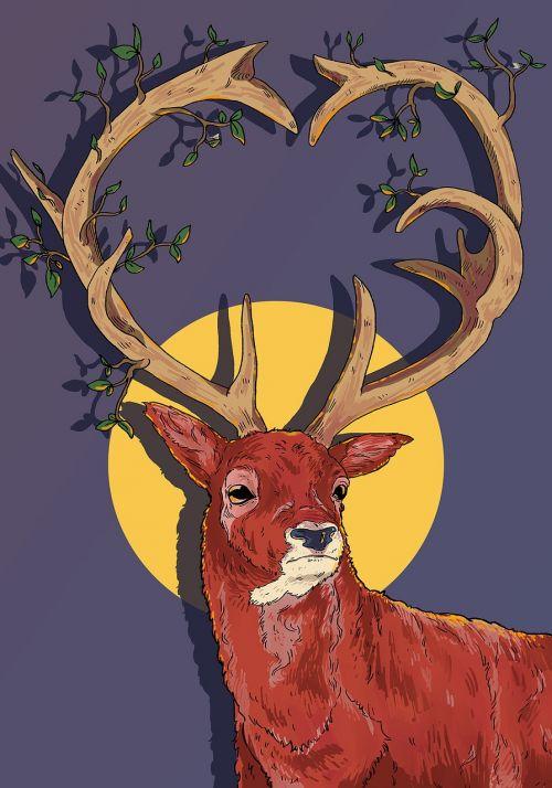 šiaurės elniai,antlers,Kalėdos