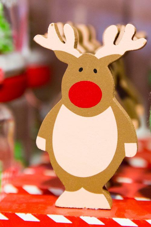 Kalėdos, apdaila, dekoracijos, šventinis, šventė, ornamentas, šiaurės elniai, sezonas, sezoninis, tradicija, tradicinis, žiema, xmas, šiaurės elnių gėlių dekoravimas