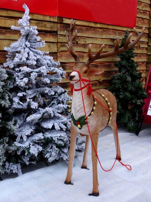 Kalėdos, santa, Claus, šiaurės elniai, apdaila, dekoracijos, šventė, atostogos, šventinis, sezonas, sezoninis, šiaurės elnias už santa
