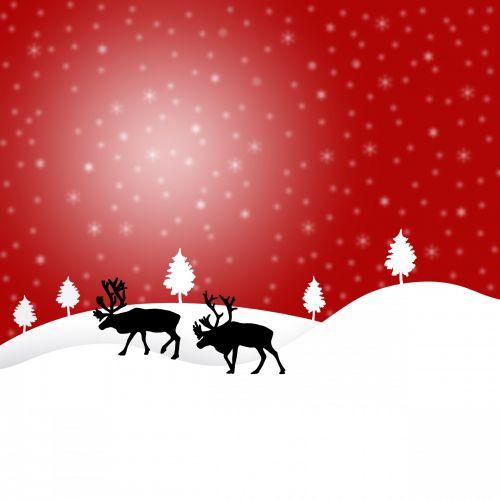 šiaurės elniai, sniegas, snaigės, Kalėdos, šventė, žiema, šiaurės & nbsp, poliaus, iliustracija, raudona, raudona & nbsp, fonas, šiaurės elnių sniegas