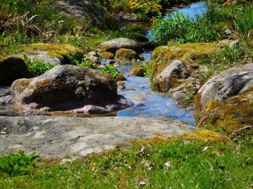 upė,mažoji upė,Bachas,vanduo,gamta,srautas,tekantys vandenys