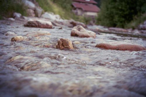 upė,Bachas,kalnų upelis,austria,srautas,krioklys,šaltinis,vandenys,akmenys,šlapias,upelis,panorama,putos,vanduo,tiltas,pavasaris,tekantys vandenys