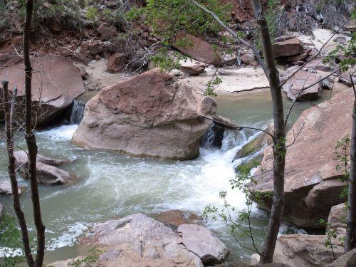 upė,Sion nacionalinis parkas,Utah,kanjonas,vaizdingas
