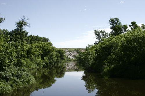 upė, Souris upė, Kanada, saulės šviesa, žaluma, vanduo, mielas