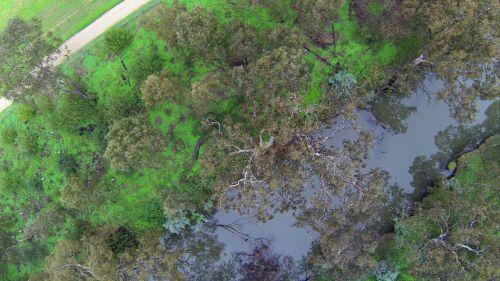 upė, antena, krūmas, gamta, vanduo, upė iš viršaus