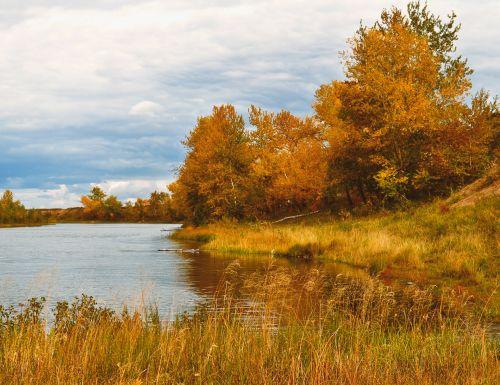 ruduo, kraštovaizdis, gamta, medžiai, upė, dangus, grožis, upės upė