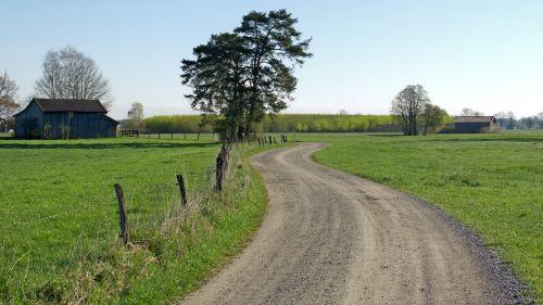 kelias,juostos,toli,gamta,purvo kelias,komercinis kelias,laukas,pieva,gamtos takas,žalias,kraštovaizdis,bavarija,pavasaris,idilija,takas,vaikščioti,Promenada,žygiai,idiliškas,atsigavimas,romantiškas,vaizdingas