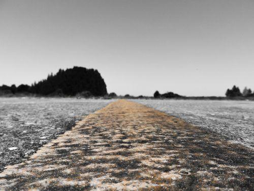 kelias,medžiai,toli,ilgai,ilgas kelias į priekį,priekyje,gatvė,keliai,kelių ženklinimas,mylios,kelionė,kelias,atstumas,nevaisinga,nustatymas,Buckingham aerodromas,horizontas,lehigh acres,florida