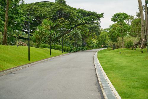 kelias,parkas,taika,vienatvė,rytas,gražus,gamta,kraštovaizdis,žalias,miškas,medis,diena,perspektyva,kompozicija,fonas,sodas,spalva