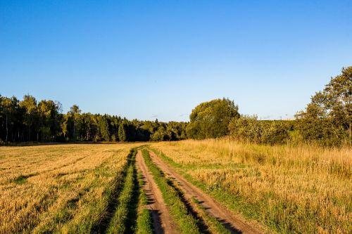 kelias,kaimas,kaimas,kaimas,kraštovaizdis,vasara,Rusija,dangus,laukas,žolė,Žemdirbystė,gamta,fonas,pieva,skaldomas kelias,griuvėsiai