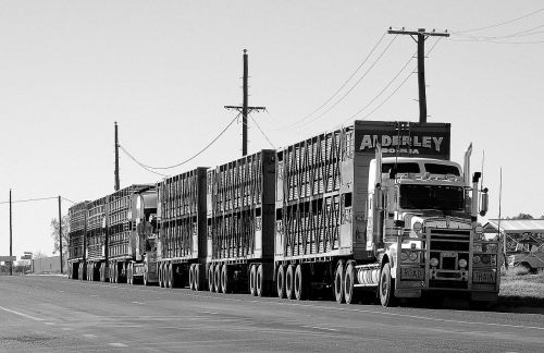 kelio traukinys,pusiau,transportas,sunkvežimis,kelias,kroviniai,industrija,kroviniai,sunkus,gabenimas