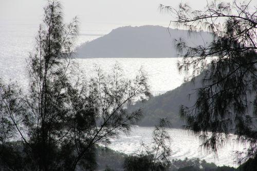Rokas,kraštovaizdis,seišeliai,akmeninis kraštovaizdis,gamta,medis,kalnai