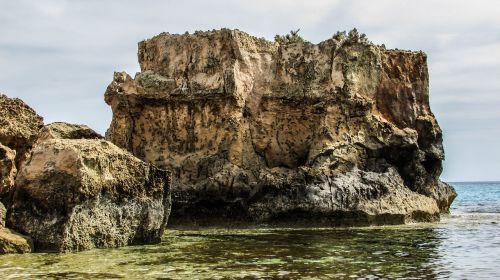 Rokas,uolos pakrantė,jūra,pakrantė,laukiniai,Kipras,ayia napa