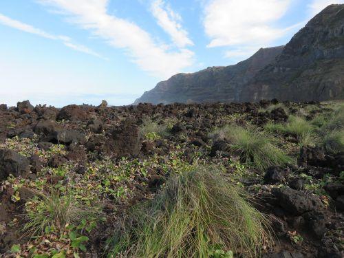Rokas,vulkaninis,lava,srautas,bazaltas,kraštovaizdis,juoda,augmenija,vulkaninis dirvožemis