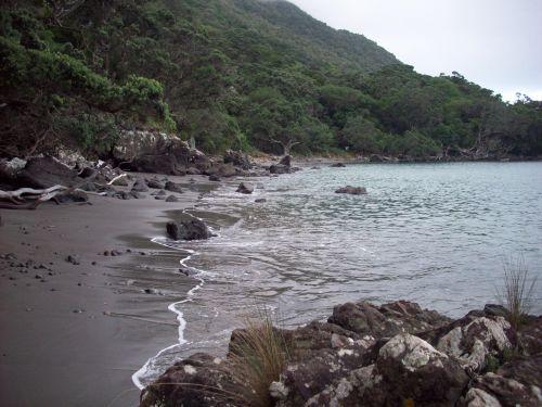 gamta, vaizdingas, jūra & nbsp, krūmas, smėlis, vandenynas ir krantas, uolingas krantas, uolos jūros krantas