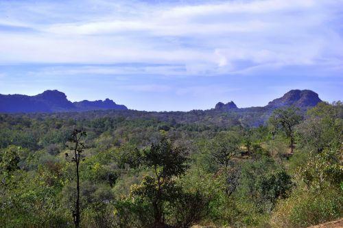 akmenys, kalvos, reljefas, gamta, augmenija, žaluma, slėnis, Gorge, uolos ir kalvos 1