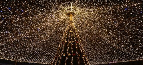 Romanija, Ro, Sibiu, Xmas, Kalėdos, Medis, Šviesa, Linksmų Kalėdų, Turgus