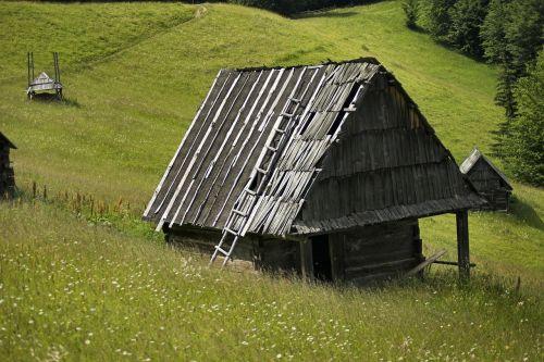 romanija,pieva,nameliai,nameliai,žolė,augalai,medžiai,laukinės vasaros spalvos,gėlės,gamta,lauke,Šalis,kaimas,vasara,pavasaris
