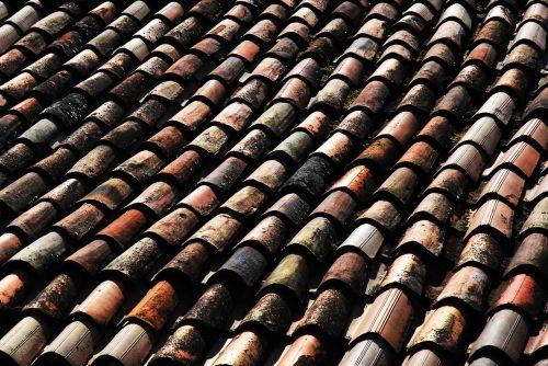 stogas,plytelės,Europa,Vakarų,raudona