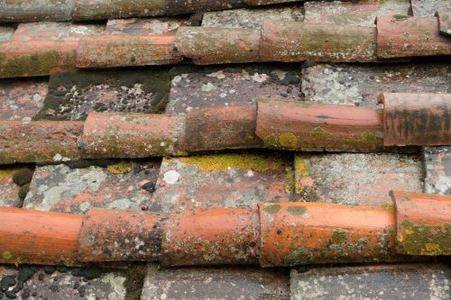 stogas,stogas,plyta,raudona,namo stogas,plytelės,architektūra,namai,pastatas,eilėje ir narys,reguliavimas,oro apsauga