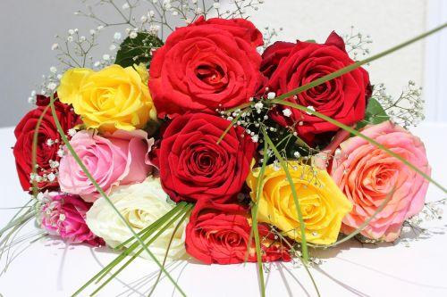 rožės,gėlės,puokštė,rožių puokštė,gėlių puokštė,meilė,gimtadienio puokštė,išaugo žydėti,strausas,sveikinu