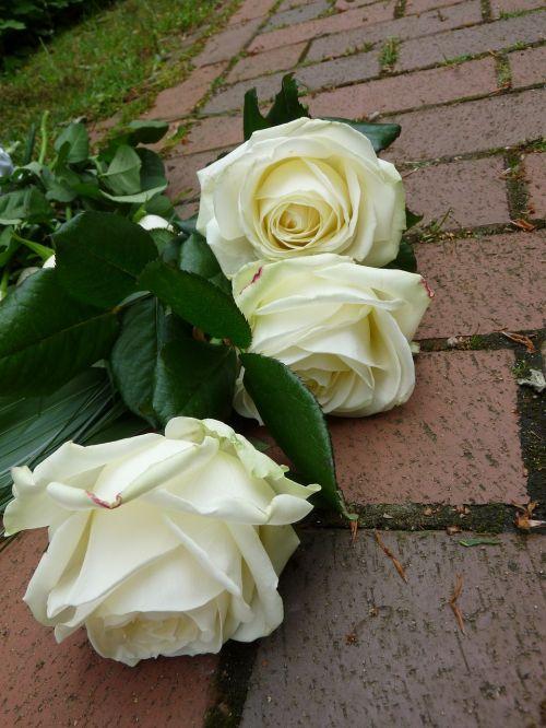 rožės,balta,laidotuves