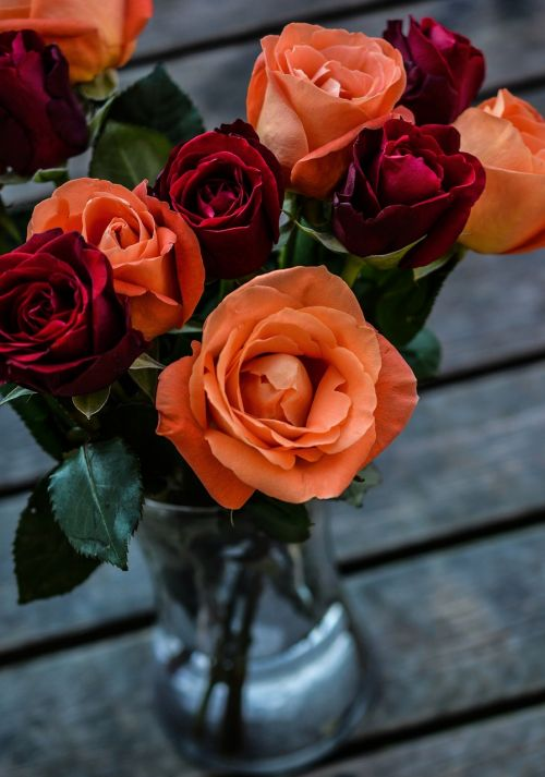 rožės,puokštė,gėlės,spalva,gėlių puokštė,gėlių puokštė,gėlių,gamta,žydėti,žiedas,spalvinga,žiedlapis,augalas,šviežias,gėlių puokštė,botanikos,žydi,krūva,minkštas