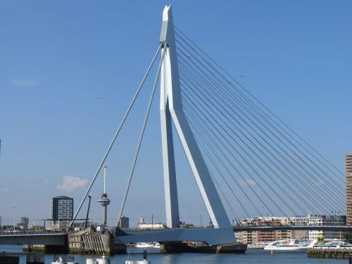Rotterdam,metropolis,erasmo tiltas,maratonas