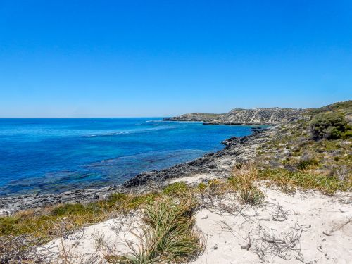 rottnest sala,iceland,sala,rottnest,Wadjemup,australia,rott nest iceland,Vakarų Australija,wa,Vakarų Australija,užsakytas,jūra,papludimys,krūmas,bushland,Rokas,kraštovaizdis,kopos
