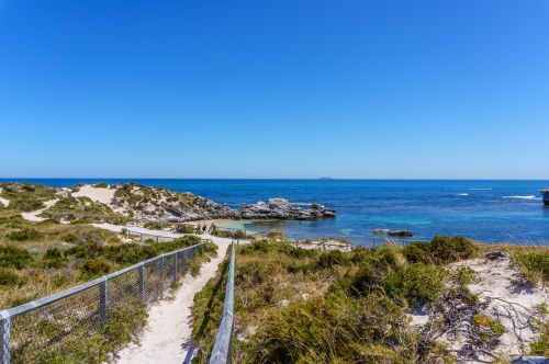 rottnest sala,iceland,sala,rottnest,Wadjemup,australia,rott nest iceland,Vakarų Australija,wa,Vakarų Australija,užsakytas,jūra,papludimys,krūmas,bushland,Rokas,kraštovaizdis,toli,smėlis,tvora,Fays Bay