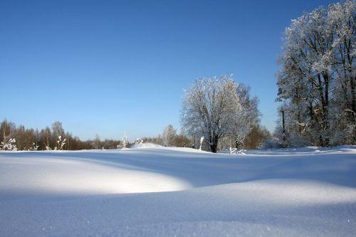 Rusijos žiema,grožis,gamta,žiema,sniegas,kaimas,Rusija,šaltai,labai graži,vaikščioti,atsiminimai,rusų,laukas,balta