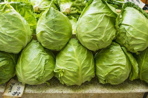 salotos,žalias,frisch,valgyti,vitaminai,mišrios salotos,sveikas,sodas,augalas,salotų plokštė,salotos,gamta,lapai,geschossener salotos