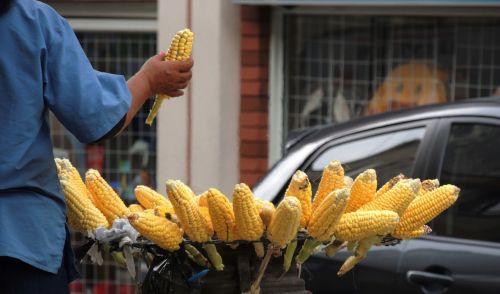 Pardavėja,cob,apie,kukurūzai,Armėnija,Kolumbija