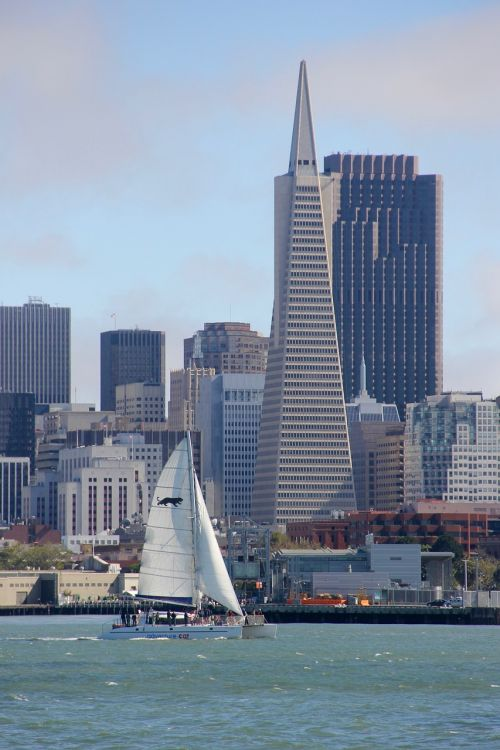 San Franciskas,panorama,buriu,burlaivis,san francisco skyline,Kalifornija,orientyras,miesto,turizmas