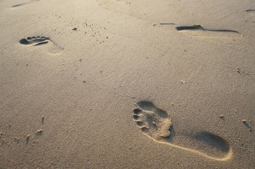 smėlis,papludimys,pėdos,pėdsakas,jūra,gamta,pėdos,spausdinti,pėdos,pėdos žingsnis