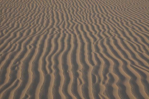 smėlio ripples,vėjas,dykuma,kraštovaizdis,sausas,šiluma,šešėliai,vaizdingas,lauke,gamta,dykuma,modelis,simetriškas