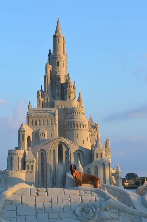 smėlio skulptūra,smėlio konstrukcijos,pasakos iš smėlio,pasakos smėlio skulptūra,pilis,smėlio pilis,Malinois,Belgijos aviganis