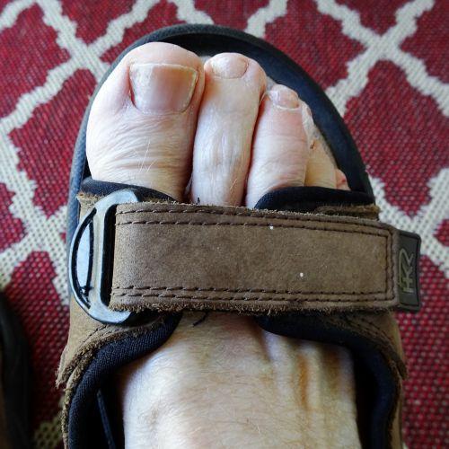 sandalas, kojos, teisingai, pėdos, Iš arti, nuotrauka, fotografija, kilimas, modelis, Iš arti, batai, sandalas arti
