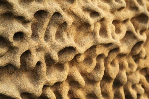 abstraktus, fonas, kreivės, išnyko, erozija, geologija, gamta, modelis, Rokas, smėlis, smiltainis, akmuo, struktūra, tekstūra, siena, banga, geltona, smiltainio erozija