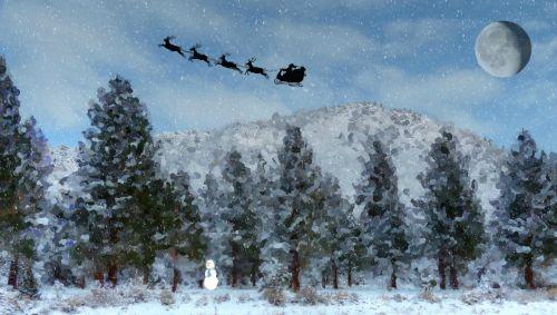 sniegas, snieguotas, žiema, sezoninis, medis, medžiai, Kalėdos, xmas, dažytos, tapybos, meno, santa, santa & nbsp, claus, šiaurės elniai, sniego senis, santa rogės