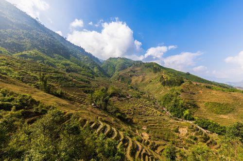 Sapa, Vietnamas, ryžių laukai, ryžiai, ryžių terasos, terasos laukai, gamta, kalnas, panorama, kraštovaizdis, kelionė, augalas, kalnai, nuotaika, laukas, kalnas, asija, kelionė, Šiaurės Vietnamas, dangus, kalvotas, idiliškas, perspektyva, tylus, poilsis, žolė, be honoraro mokesčio