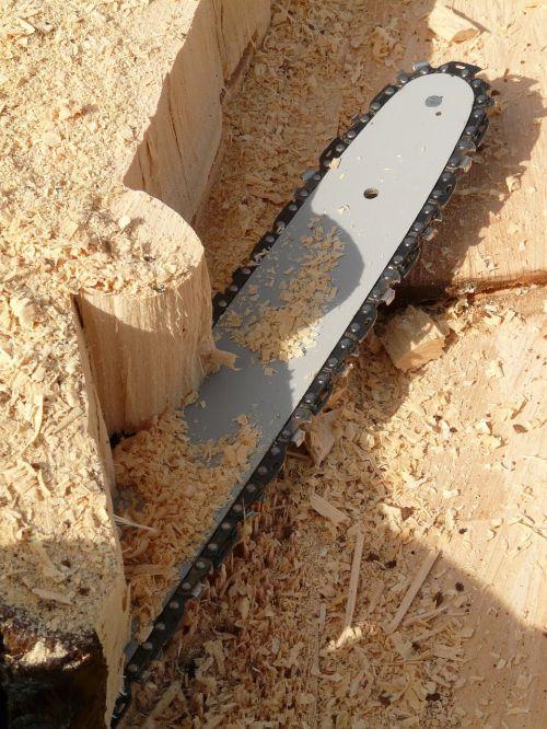 pamačiau,grandinėlė,grandininiai pjūklai,grandinė,mediena,malkos,medžio dirbiniai,medis,mediena,medienos ruoša,augimo atsargos,aštrus,rizika,pavojingas,sužalojimo rizika