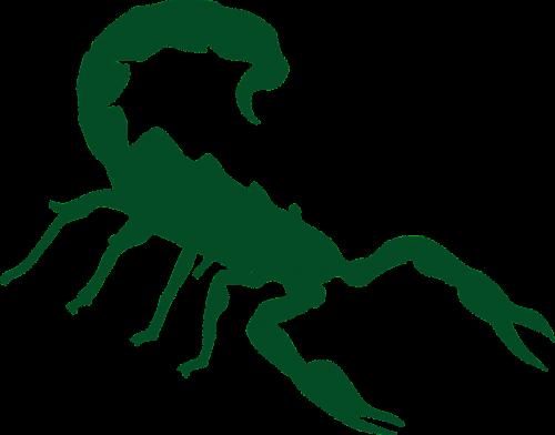 skorpionas,siluetas,juoda,vabzdys,izoliuotas,skorpionas,simbolis,tatuiruotė,horoskopas,laukiniai,nemokama vektorinė grafika