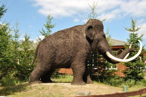skulptūra,gyvūnų skulptūra,vilnos mamutas,urzeittier,kraštovaizdis,parkas,eglės,medžiai,Pirminis parkas,Teminis parkas,oranienburg