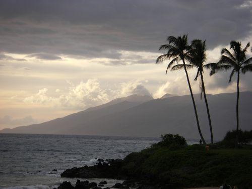 jūra,Hawaii,papludimys,vandenynas,Hawaii beach,atostogos