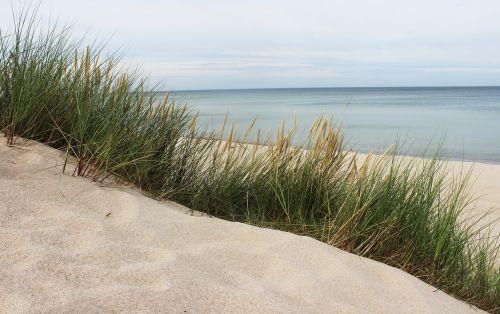 jūra,Baltijos jūra,papludimys,Baltijos jūros pakrantė,smėlis,žolė,Lenkija,smėlio kopos