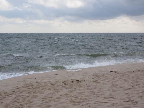 jūra,vanduo,sylt,alkūnė,šiaurės viršūnė,antspaudas,šiauriausias taškas Vokietijoje