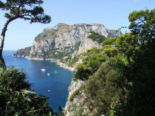 jūra,kranto,pakrantė,medžiai,vandenynas,amalfi pakrantė,il faglioli,capri,pietų italija,italy